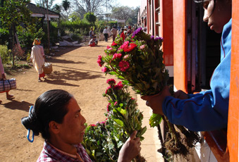 Station trader selling fresh flowers, at a station on the Mandalay - Pyin Oo Lwin - Lashio line.