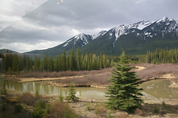 Scenery soon after leaving Banff, along the Bow River