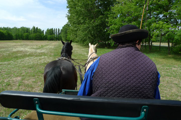 Horse-drawn transport from train to horsemanship show