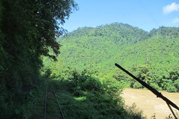 Scenery from the Beaufort-Tenom train