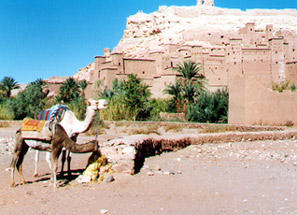 The historic town of Ait ben Haddou in Morocco...