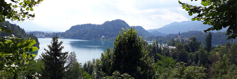 View over Lake Bled