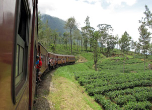 Scenery from a Colombo-Kandy train