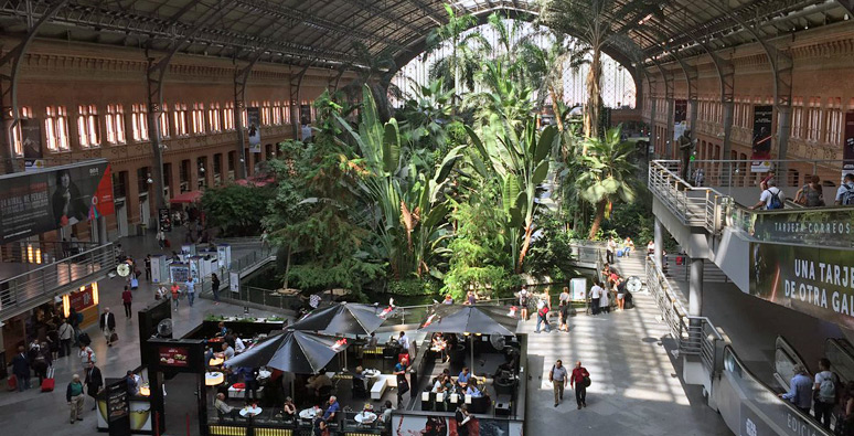 Madrid Atocha's old trainshed